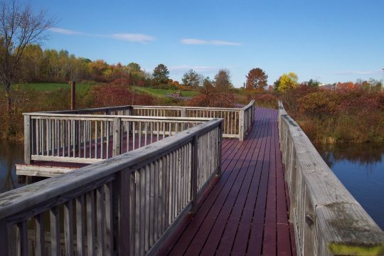 The Viles Arboretum in Augusta will celebrate the re-opening of its refurbished wetland boardwalk from 3 to 4 p.m. today. The boardwalk provides a path through a cattail wetland and open-water habitat. Its elevated vantage point offers an opportunity to view wildlife, especially abundant bird life. The arboretum at 153 Hospital St. provides 224 acres of field, forest and wetland in the heart of the capital. For more information, go online to www.vilesarboretum.org or call 626-7989.