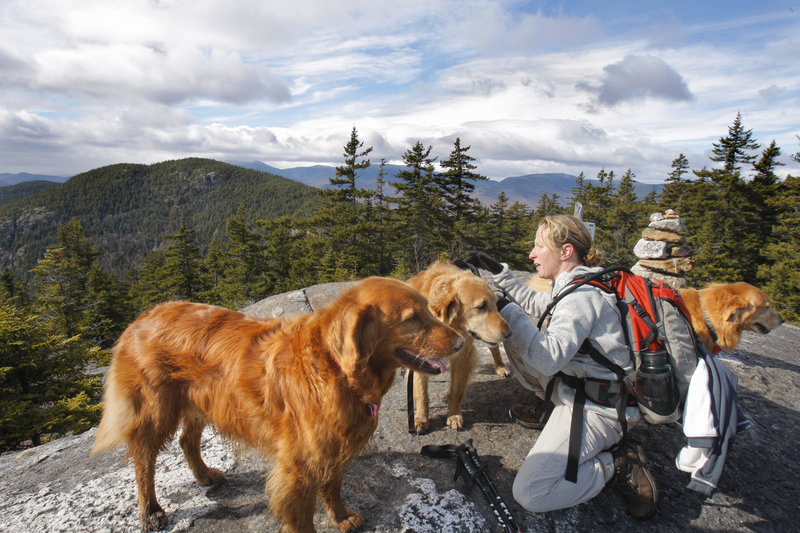 At the summit of East Royce Mountain, Higgins takes the pack off C.J., center, after hiking up with him and her two other golden retrievers Molly, left, and Abby.