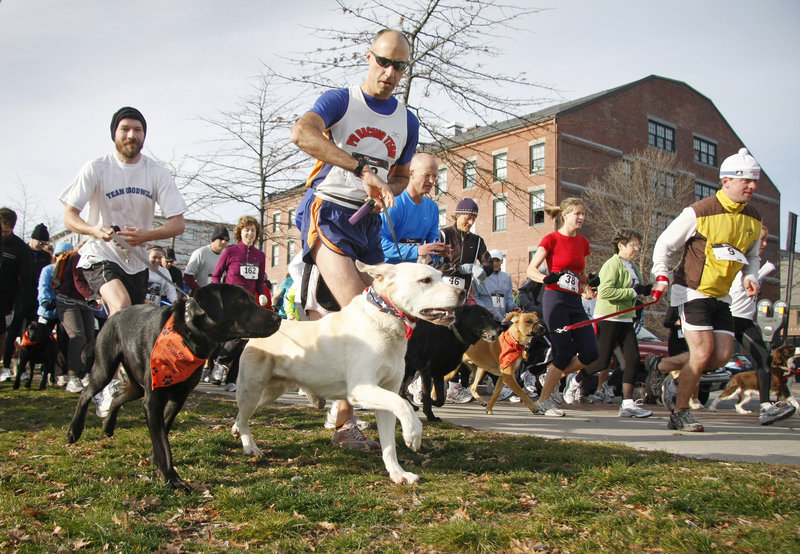 Hans Brandes, center, of Falmouth and his yellow Lab, Kona, join other participants at the start of the first Bayside Trail 5K Race on Sunday, benefiting Portland's new Bayside Trail.
