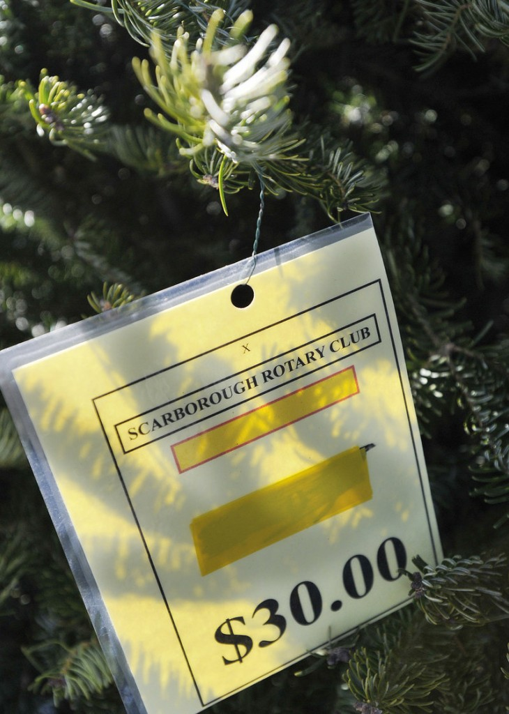 A price tag hangs on a tree at the Scarborough Rotary's Christmas tree sale Sunday. Sale hours are 3 to 7 p.m. Monday through Friday and 10 a.m. to 7 p.m. Saturday and Sunday at the corner of Route 1 and Black Point Road in Scarborough.