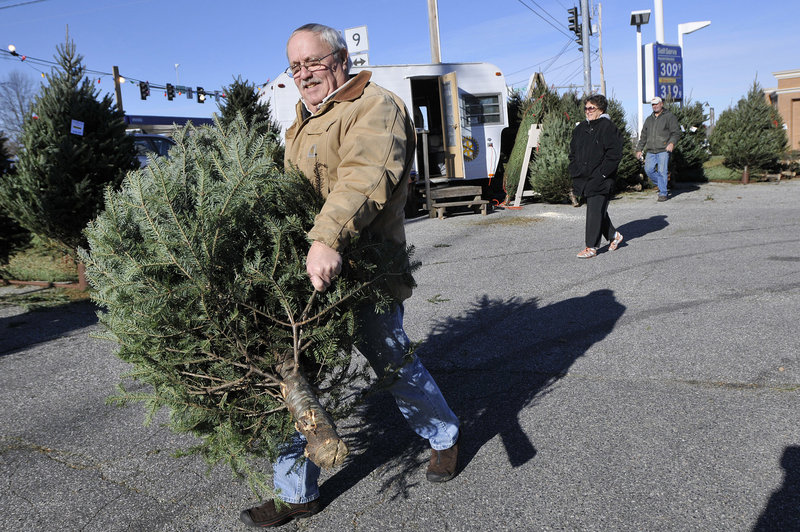 Tom Dobbins of Scarborough carries a tree to his pickup Sunday after choosing it at the Rotary Club of Scarborough's Christmas tree sale. He and his wife had to exchange their first choice, which proved to be too big.