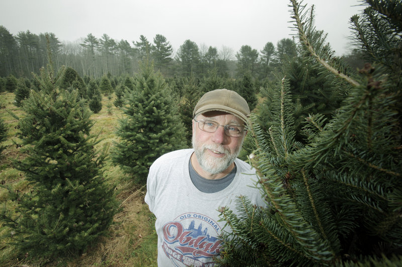 David Brandt and his wife, Diane Holmes-Brandt, own Holmes Tree Farm in Kennebunk. They have more than 28,000 trees planted.
