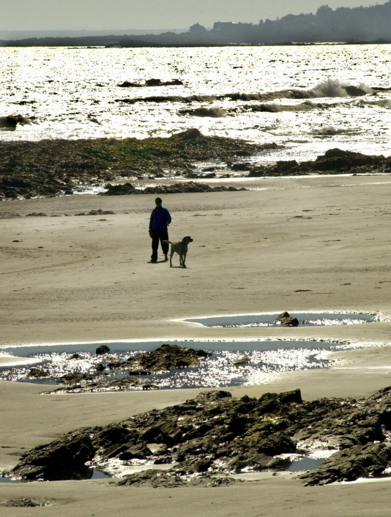 Higgins Beach in fall and winter is less used, but shouldn't be impossible to reach, a reader says.
