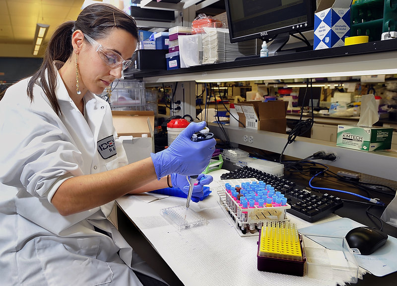 Vanessa Vigue, a scientific research associate, performs a test at Idexx Laboratories in Westbrook.