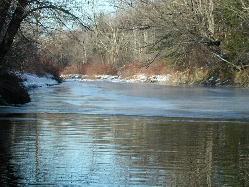 The Presumpscot River Preserve will be the scene of a walk offered by Portland Trails on Feb. 19, as part of a free series made possible by a grant from Healthy Portland for adults and families with children making an effort to get more exercise this winter. The winter walks begin Jan. 8 and will include several Portland Trails locations. Register for the walks by e-mailing info@trails.org or calling 775-2411. Go to www.trails.org for more information.