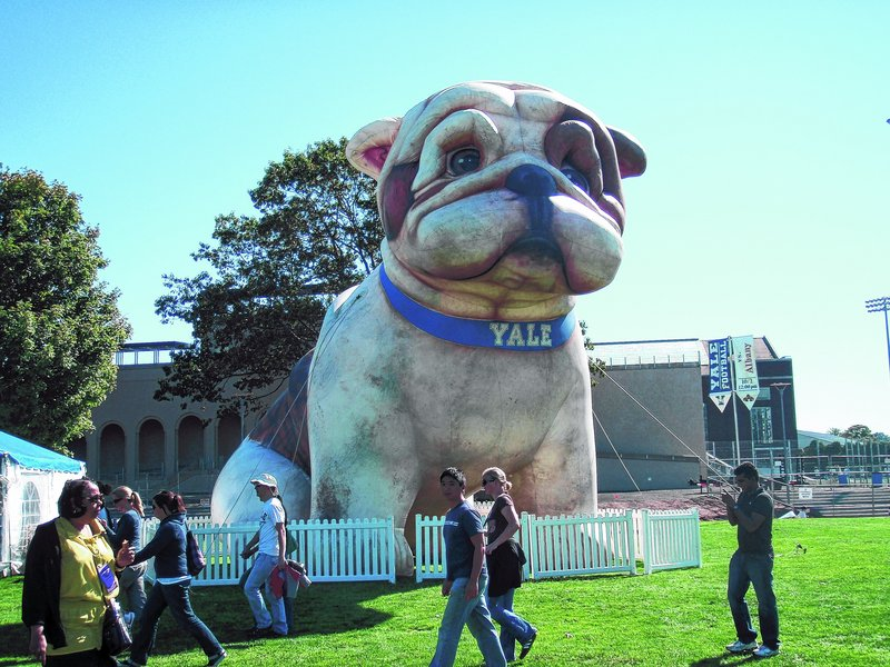 Handsome Dan, Yale's bulldog mascot, welcomes spectators to home football games during the fall.