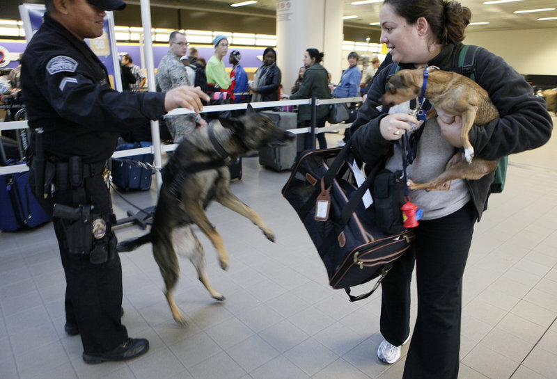 Los Angeles Police K-9 officer E. Ornelas, accompanied by his Belgian Malinois, Kira, orders a woman to keep her dog inside his cage Tuesday at Los Angeles International Airport.