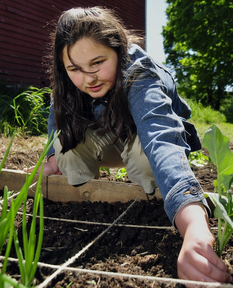 Master Gardener volunteers are involved in a wide range of programs and community efforts, including Kids Can Grow. Here, a volunteer tackles the garden at Shaker Village in Gray.