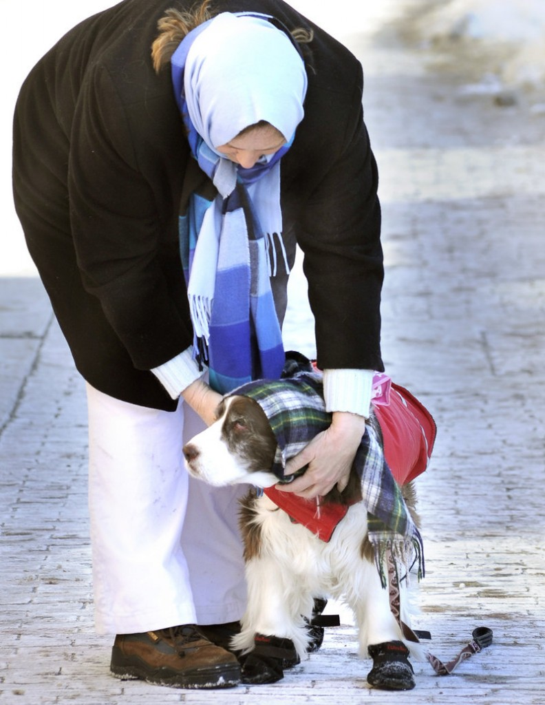 Donna Luebke of Georgetown and Bonnie, a 13-year-old springer spaniel, keep bundled up as they walk along Congress Street in Portland, where the low was minus 13. But Portland was far from the coldest place in Maine; in Fryeburg, it was minus 29.
