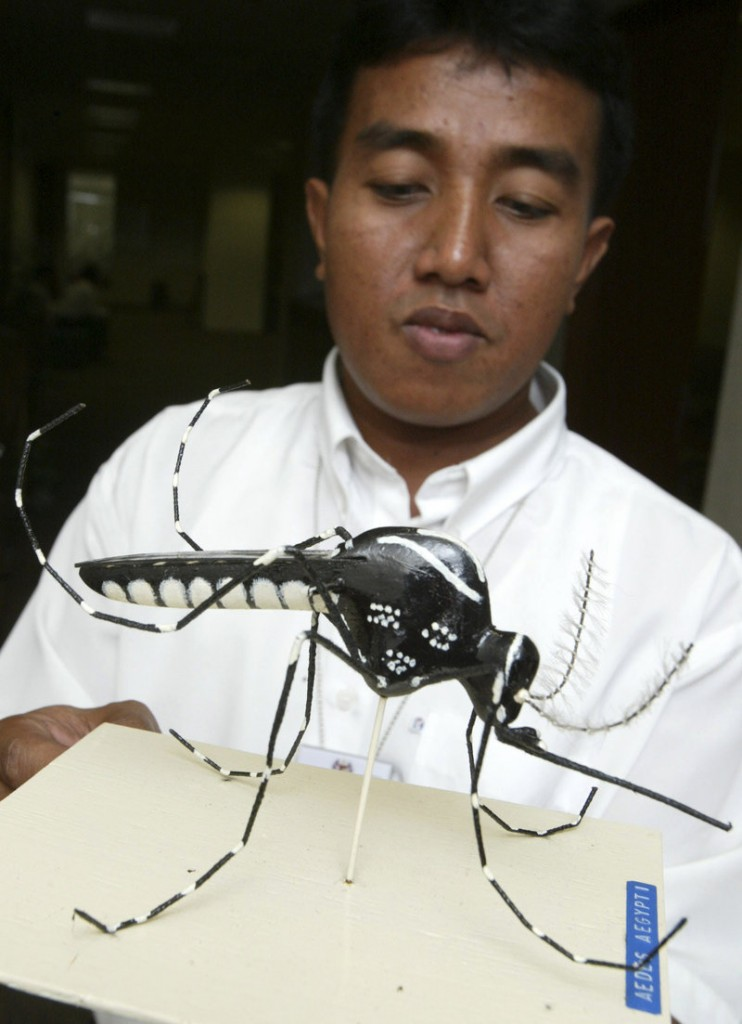 A Malaysian health ministry official displays a scale model of an Aedes aegypti mosquito in April 2008. The country released about 6,000 sterile insects in a small test to see if it would curb cases of dengue fever. Critics fear the test might have unforeseen consequences, such as creating a strain of uncontrollable mutated mosquitoes.