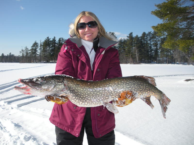 Jenny Moody caught this 13-pound pike on Jan. 22 in Winthrop. Her husband, Clyde Moody of Winthrop, who sent in the picture, said she moved here from Florida in November.