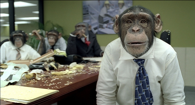 """Working with Monkeys"" for careerbuilder.com"