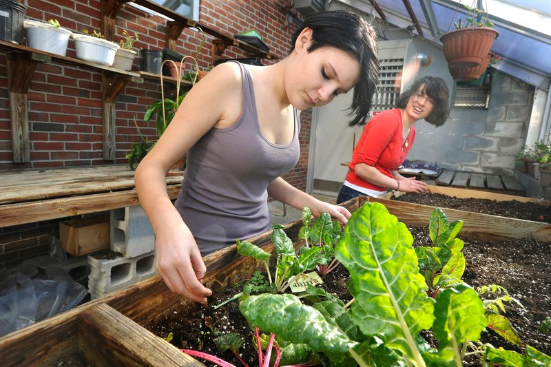 "South Portland sophomore Giselle Muse, left, and senior Chloe Kramer tend to plants. ""I would like to see these plants shoot up – more quantity,"" Giselle said."