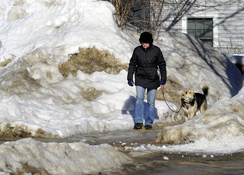Christine Kiley and her dog Andy walk carefully over the icy sidewalks around Munjoy Hill in Portland Tuesday. Kiley owns Dogwise Obedience, a dog training business.