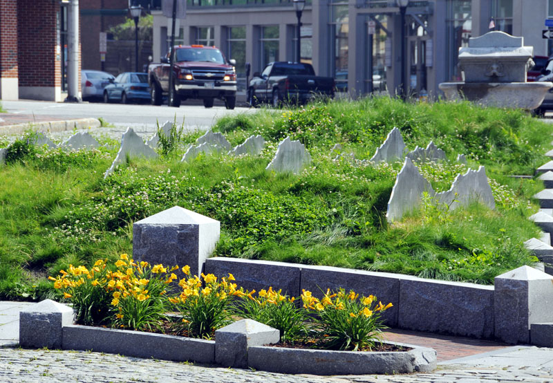 """Tracing the Fore"" at Boothby Square in the Old Port."