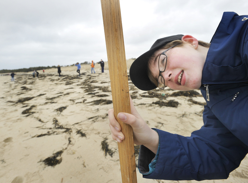 Scarborough Middle School students work on a beach-profiling project Thursday, taking measurements from the dunes to the shoreline. Their findings, to be reported to the Maine Geological Survey, will help track the slope and erosion of the beach. Here, Sarah Mulligan calls out measurements while sighting down her measuring pole.