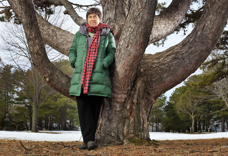 Conservationist Roxanne Quimby poses next to white pine in Portland. Quimby, the founder of Burt's Bees, has been buying up land in Maine for what she hopes will one day become a national park.