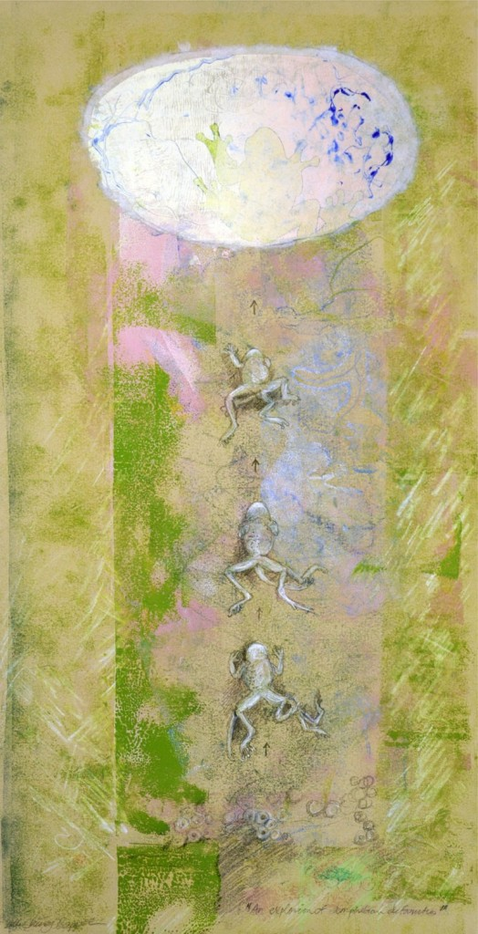 """Kate Cheney Chappell's """"Explosion of Amphibian Deformities."""""""