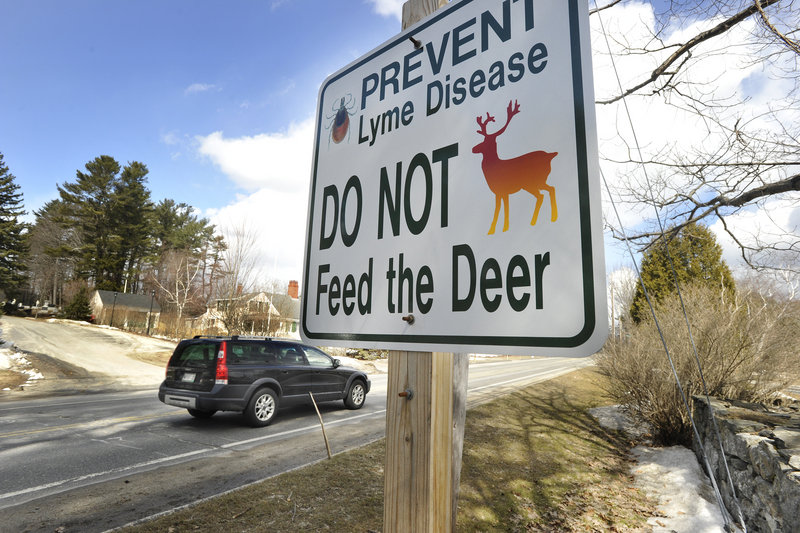 Signs that went up in Cumberland last week, warning of Lyme disease and asking residents not to feed deer, are part of an effort to educate the public about the practice.