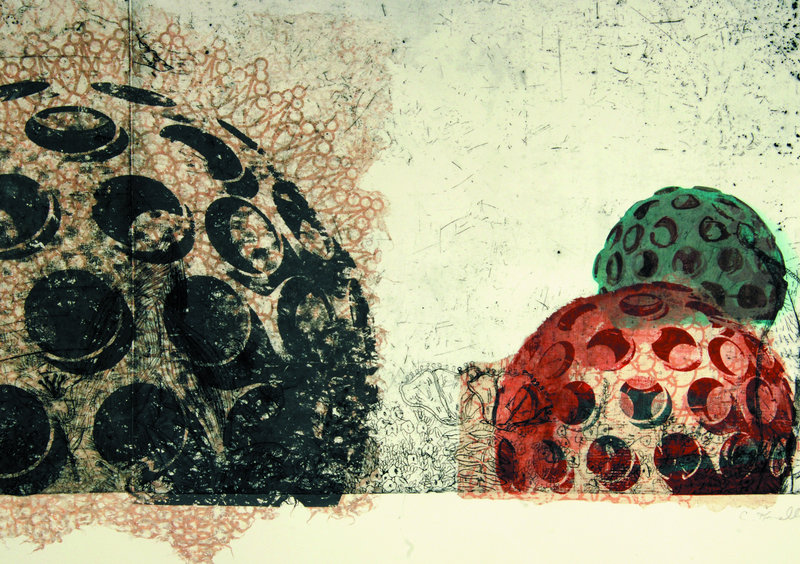 """""""Geodesic Garden – Bucky Fuller II,"""" from the """"Garden series,"""" an etching and screen print by Colleen Kinsella, is on view in the 2011 Biennial at the Portland Museum of Art."""
