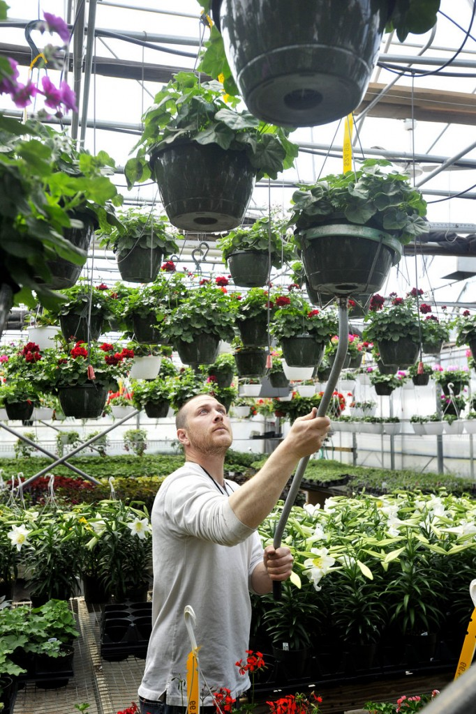 Ryan Carleton works in a greenhouse at Broadway Gardens.