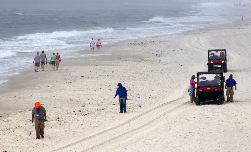 Oil spill cleanup workers search for tar balls in Gulf Shores, Ala., Wednesday. A year after the Deepwater Horizon oil spill, some signs of normalcy are returning, though tar balls continue to wash ashore.