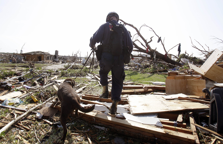 Brent Koeninger, with Oklahoma Task Force One search-and-rescue, and his search dog Huck comb through debris looking for victims today in Joplin, Mo.