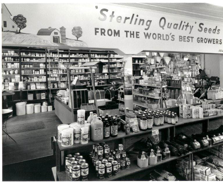An interior shot of the seed operation at one of its earlier Portland locations.
