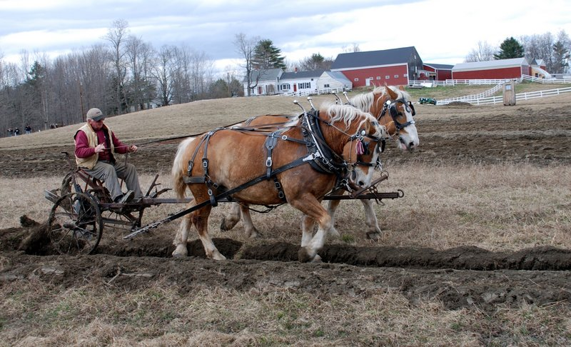 """Luther Gray of Monmouth is one of the directors of the Farmers Draft Horse, Mule and Pony Club. """"Many people, especially young folks, have no idea how our landscape was created. It was all cleared and shaped by horses and oxen,"""" Gray says. Right, a banner for Plow Day."""