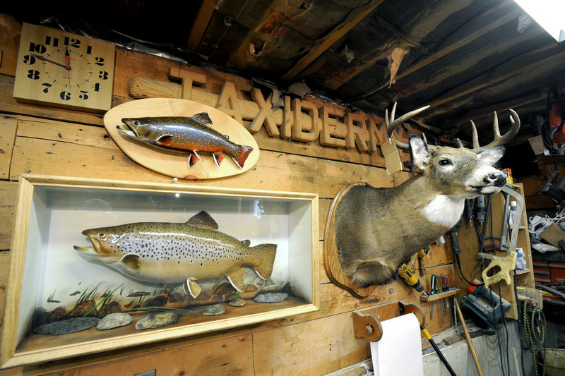 """Dick Galgovitch's collection includes fish and deer. """"There will be a lot of turkeys coming in soon,"""" he said earlier this month."""