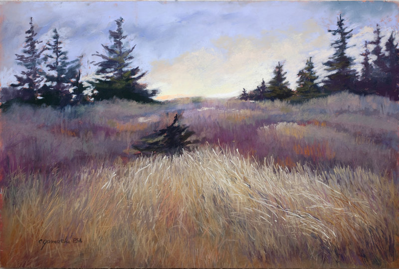 Color and Textures, a pastel by Claudette Gamache of Phippsburg. Gamache will be honored by the International Association of Pastel Societies in June.