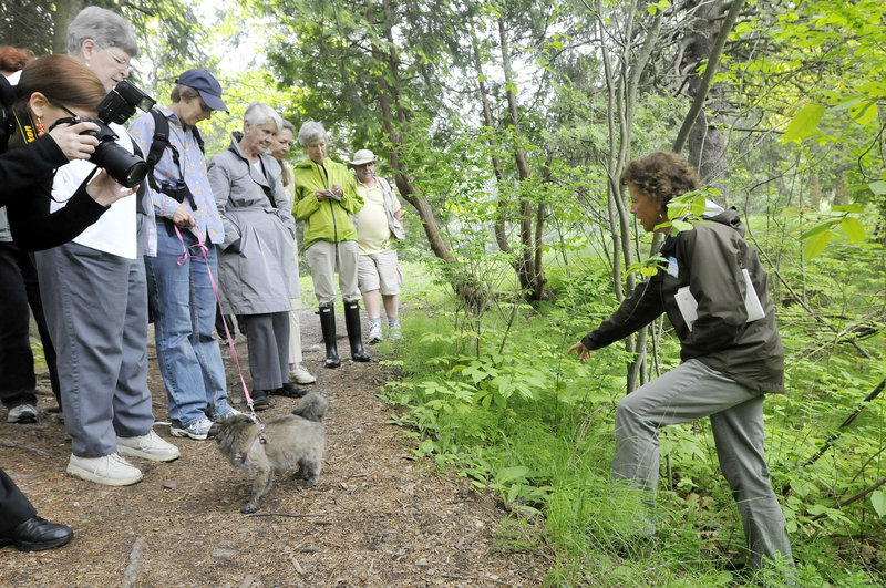 """Corinne Martin, right, leads an herb tour at Evergreen Cemetery. Noting the cemetery's parklike elements, a founding member of Friends of Evergreen said, """"You enter this designed landscape, and you are to experience a sense of peacefulness."""""""