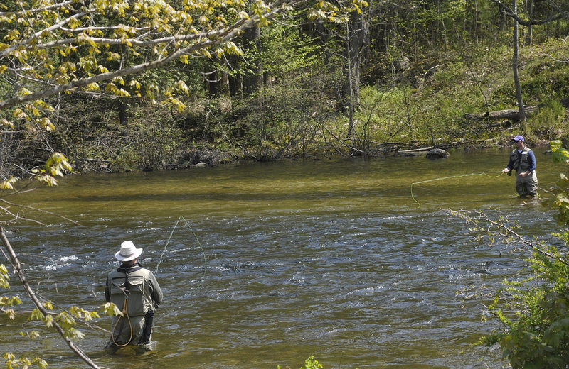 Anglers line the river in Grand Lake Stream in late May. Efforts by state biologists and area guides have helped to keep fish abundant there.