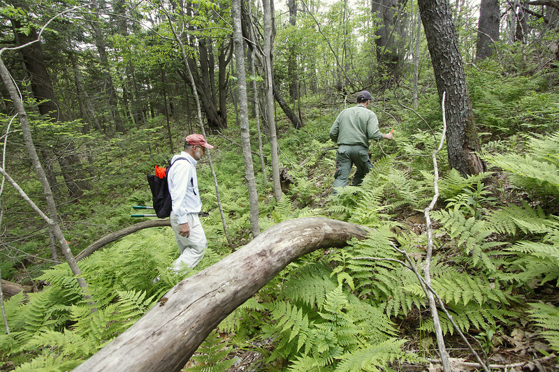 Dan Ostrye, left, director of Yarmouth's Bike and Pedestrian subcommittee, and Jim Tasse, education director at the Bicycle Coalition of Maine, mark a rough design of trails Thursday on land in Yarmouth owned by Central Maine Power.