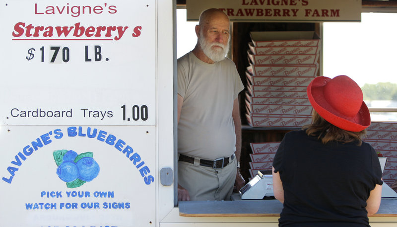 Leland Theriault helps a customer Tuesday at Lavigne's Strawberry Farm in Sanford, where he works as a field hand/sales manager. This year the pick-your-own strawberry season will run until mid-July, followed by the blueberry season.