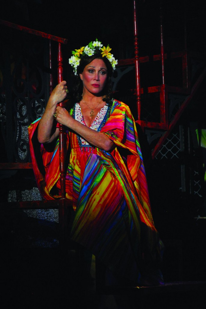 "Michelle Lee stars in the current show at the Ogunquit Playhouse, the '60s-centric musical ""Summer of Love,"" also continuing through July 16."