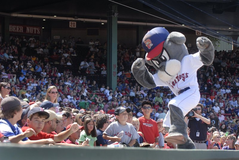 Press Herald file/2008Slugger, mascot for the Portland Sea Dogs, will get to play with other types of dogs at Bark in the Park Thursday at Hadlock Field. Dogs from the Portland Police K-9 unit and just regular pets will be at the park for the event.