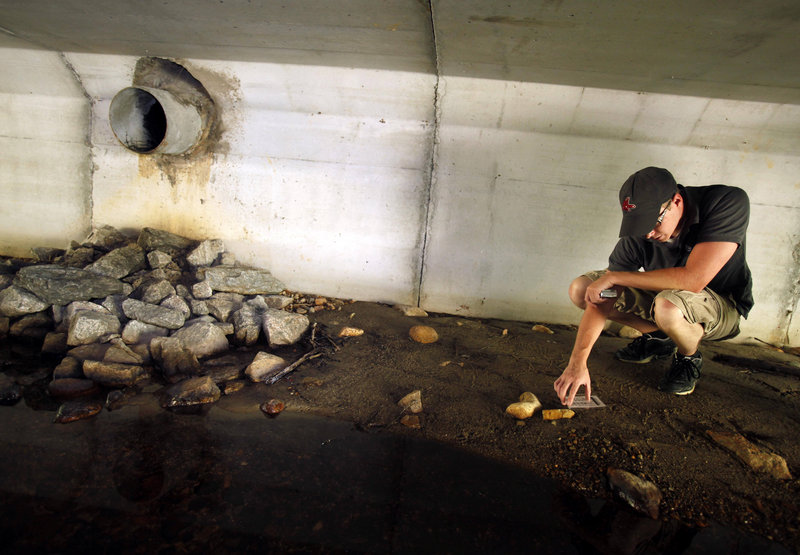 University of Massachusetts-Dartmouth student Matt Gonneville inspects animal tracks found in a rebuilt culvert in Taunton, Mass. An ambitious project is under way to survey and evaluate New England's river and stream crossings.