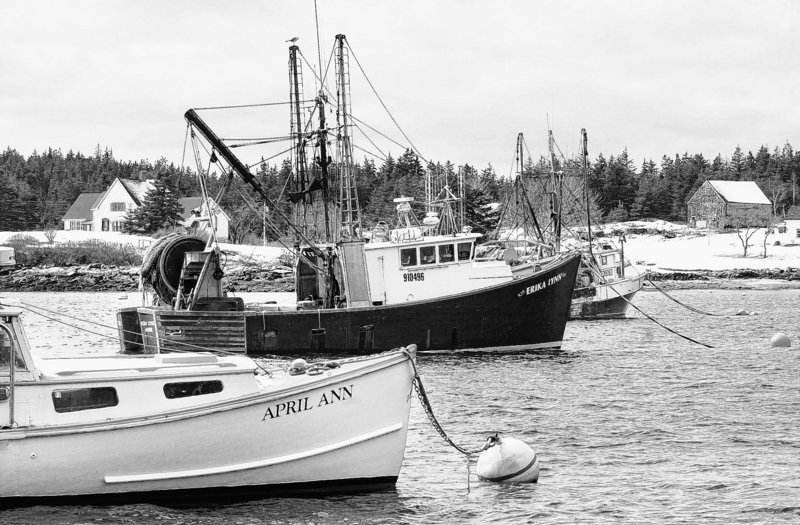 Letting Maine draggers land lobsters won't alter two decades of change in the industry.