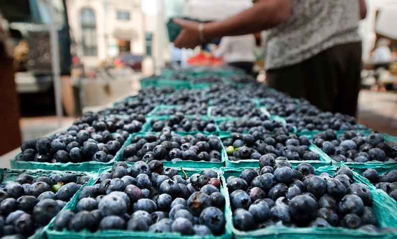 A shopper selects blueberries last week at the farmers market in Portland's Monument Square, one of three markets in the city.