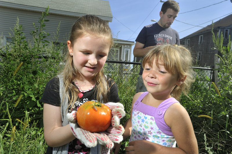 Charity Slade, 5, shows a tomato with a slug on it to her friend, McKenna Hodgkin, 4, while they work in the community garden at the Joyful Harvest Neighborhood Center on Pierson's Lane in Biddeford. The faith-based center focuses its programming on youths and families, especially residents in the surrounding neighborhood.