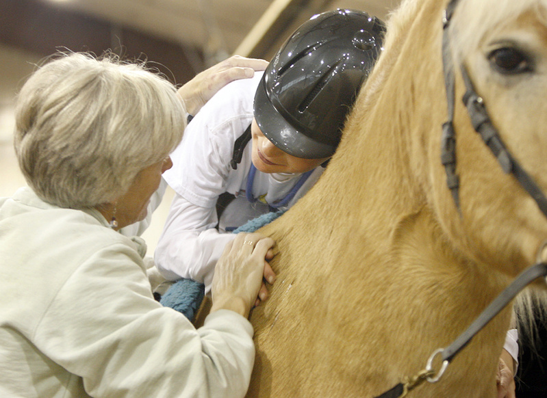 Bronson hugs Scotty as he holds on to Luke, a Haflinger, last week at the center.