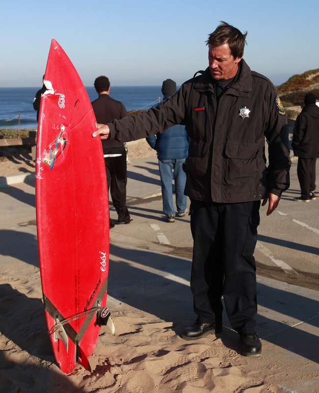 California state lifeguard Kevin Brady holds a surfboard with a shark bite in it after an attack at Marina State Beach on Saturday.