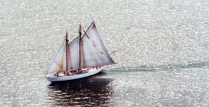 The schooner Bowdoin sails in the afternoon sun off Islesboro.