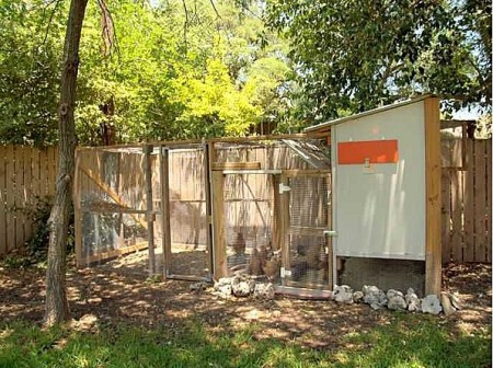 This home in Austin, Texas, features a backyard chicken coop.