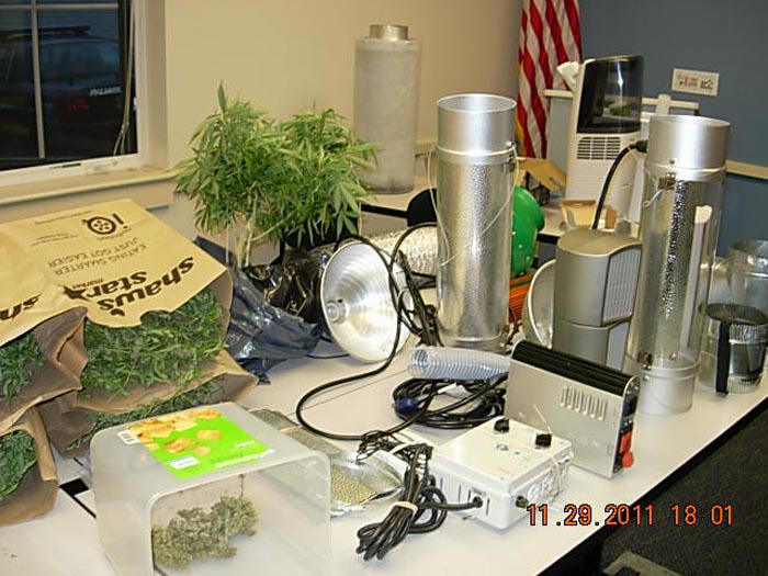 Police say 11 pounds of marijuana and specialized growing apparatus were seized from Kellyjean Kelley's apartment.