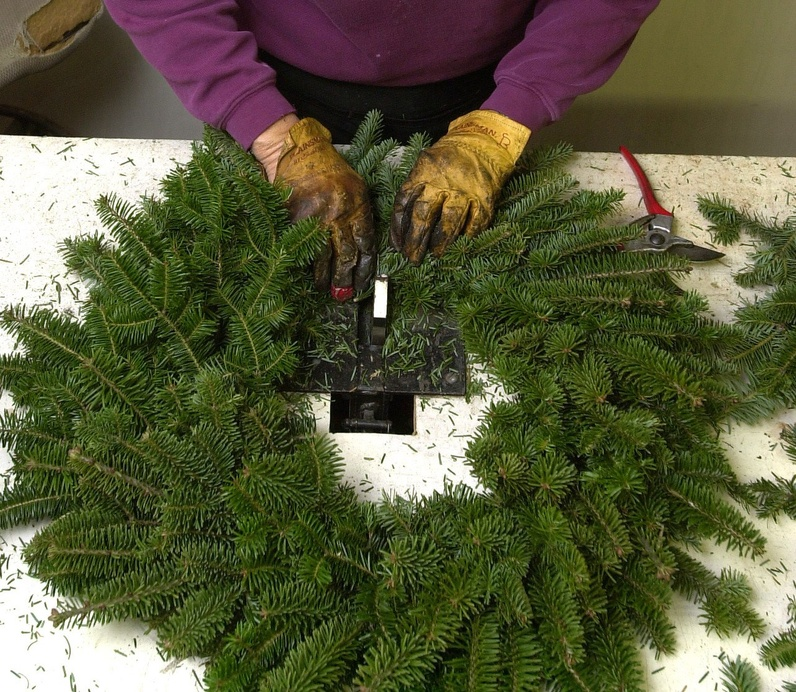 The Maine Department of Agriculture has made an information sheet available that outlines other states' import restrictions, so Maine companies that export Christmas trees and wreaths will be informed. Gordon Chibroski Christmas tree farm Wreathes