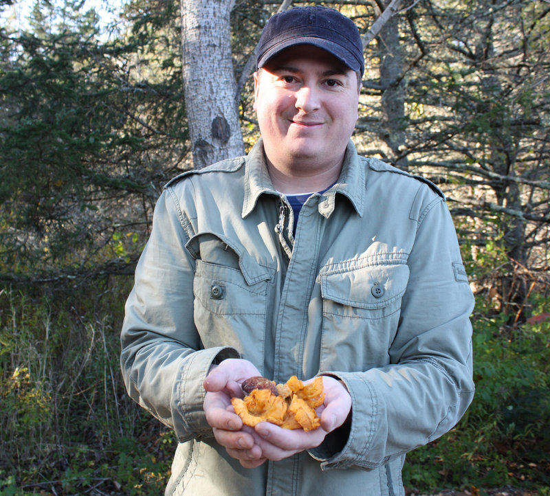 Chef David Ross shows off the mushrooms he collected during an hour's walk in the woods.