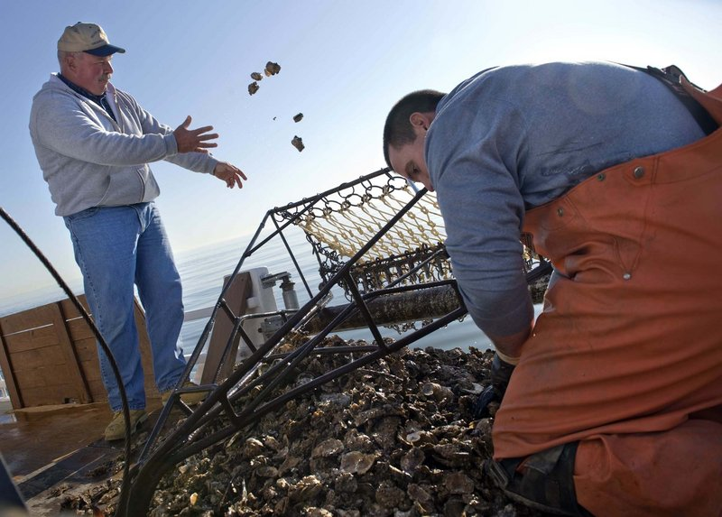 "Capt. Barry Sweitzer, left, and first mate Kelly Sullivan, 24, throw away most of their oyster catch on their final voyage on the Hilda M. Willing skipjack. ""The oyster industry in the northern bay is gone,"" Sweitzer says."