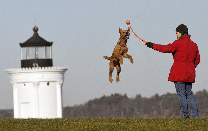 Rachelle Pellerin of South Portland prepares to hurl a ball for her enthusiastic dog Utah, an Irish terrier, at Bug Light Park in South Portland on Monday. Sunny weather is expected again today.